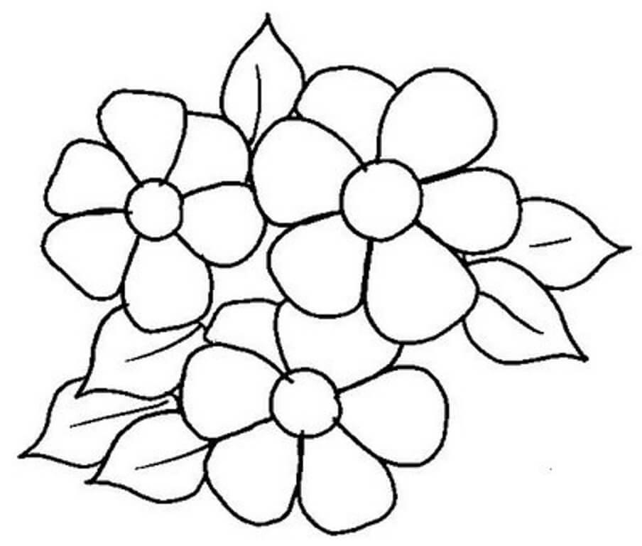 Moldes De Desenhos De Flores Para Imprimir Mensagens E Atividades